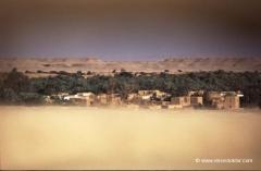 aegypten-oase-wueste