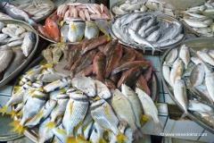 fischmarkt-bahrain