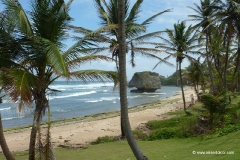 Barbados Reise