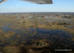 okowango-delta-luftansicht