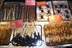 insekten_nachtmarkt_china