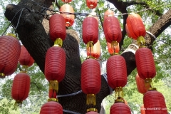 peking_lampen_china