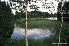 finnland-fotos