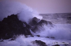 korsika-strand