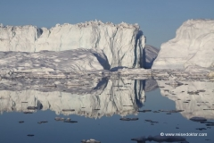 gletscher-diskobucht
