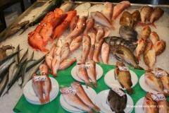 japan-fischmarkt-tokio