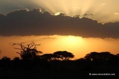 sonnenuntergang-masai-mara