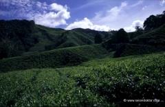 malaysia-rundreisen