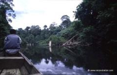 taman-negara-nationalpark