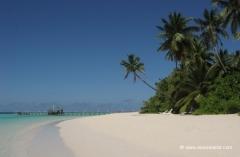 malediven-reisen
