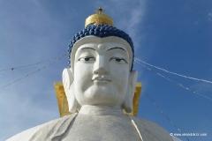 buddha-mongolei