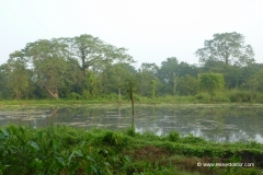 chitwan-nationalpark-nepal