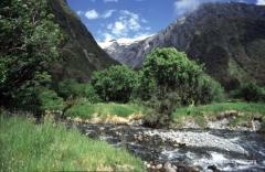 studienreisen-neuseeland