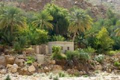 wadi-oman