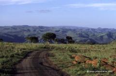 suedafrika-mietwagen