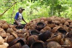 kokosnuesse-indonesien_0