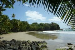 traumhafter_strand_tobago