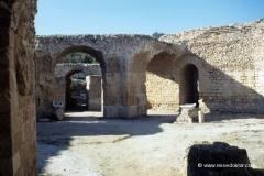 tunesien-studienreise