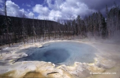 usa-yellowstone-nationalpark-studienreise