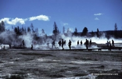 yellowstone-nationalpark-studienreisen