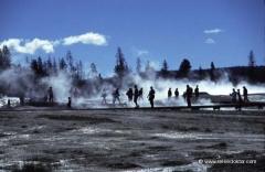 yellowstone-nationalpark-studienreisen