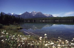 kanada-jasper-nationalpark_0