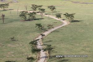 Lake Nakuru, Kenia Nationalpark