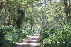 Kenia: Lake Nakuru Nationalpark