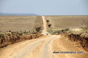 Straße in die Masai Mara