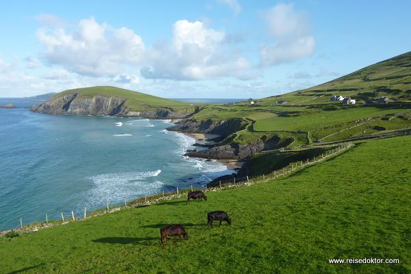 Buchten auf der Halbinsel Dingle, Irland