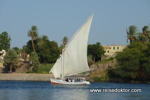 Feluken in Assuan, auf dem Nil