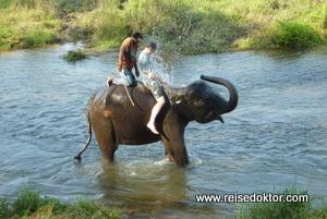 Elefantenbaden im Chitwan Nationalpark