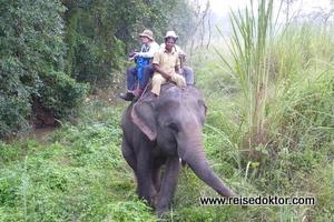 Elefanten reiten im Chitwan Nationalpark