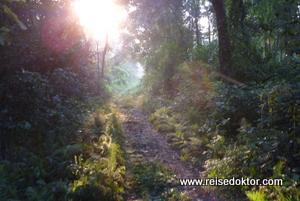 Wanderung im Chitwan Nationalpark