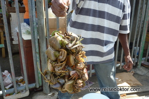 Krabben am Markt von Scarborough auf Tobago