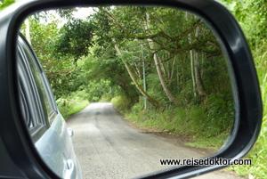 Mietwagen Antigua