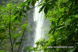 Guadeloupe Carbet Wasserfall