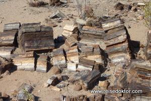 Versteinertes Hotel Damaraland