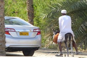 Esel & Auto im Oman