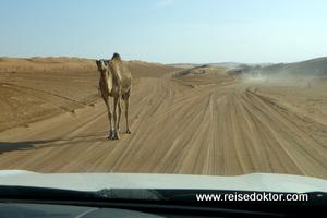 Sandpiste Wüstencamp