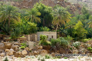 Wadi Tiwi im Oman