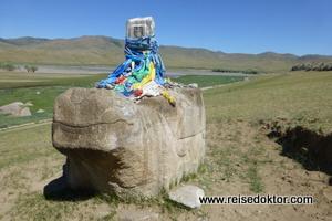 Schildkröte Karakorum
