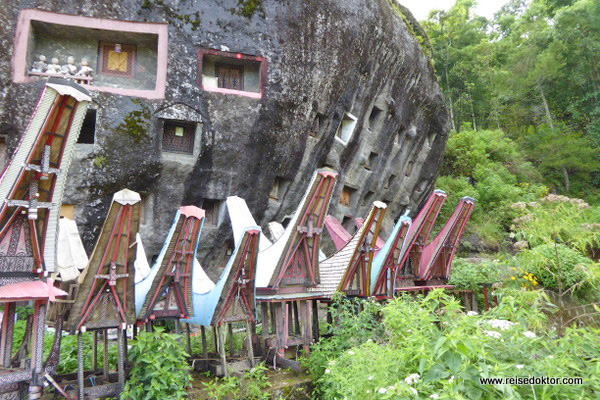 Felsengraeber Sulawesi