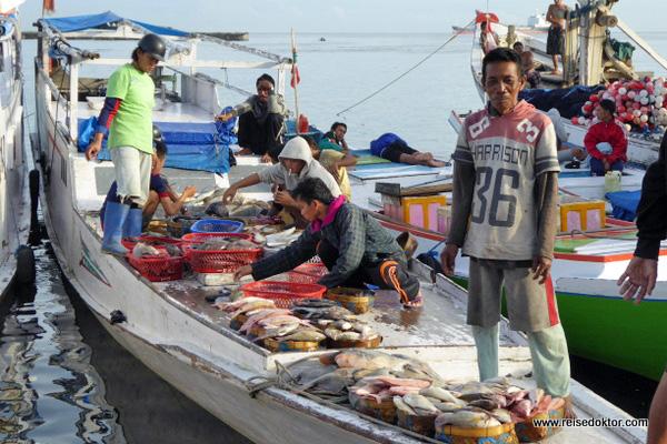 Fischerboote Sulawesi