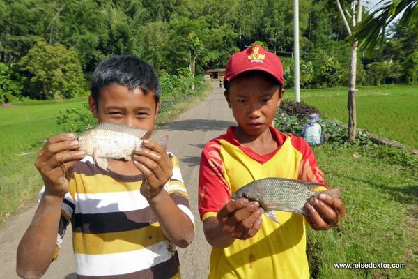 Kinder auf Sulawesi