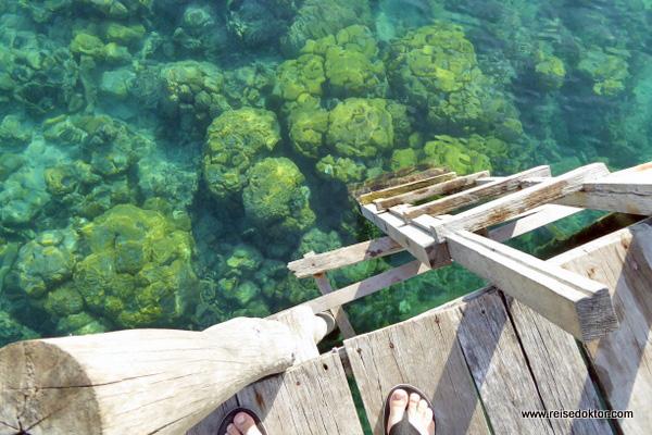 Korallenriffe Togian