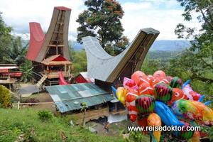 Begräbniszeremonie in Tana Toraja - Tag 1