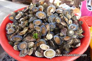 Muscheln am Fischmarkt