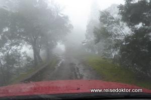 Pico da Cruz im Nebel