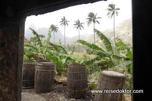 Rumproduktion Kap Verde